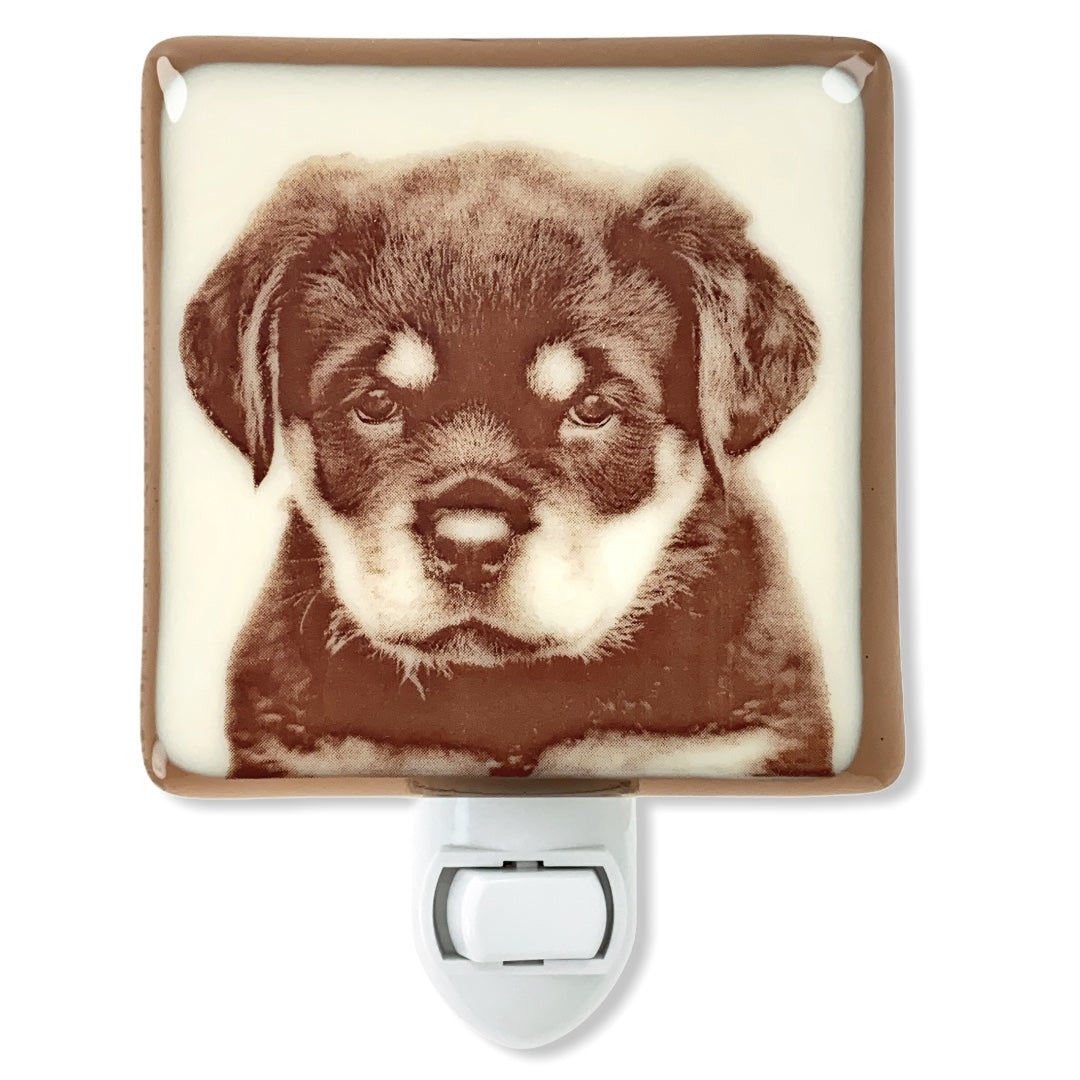 Rottweiler Puppy Night Light