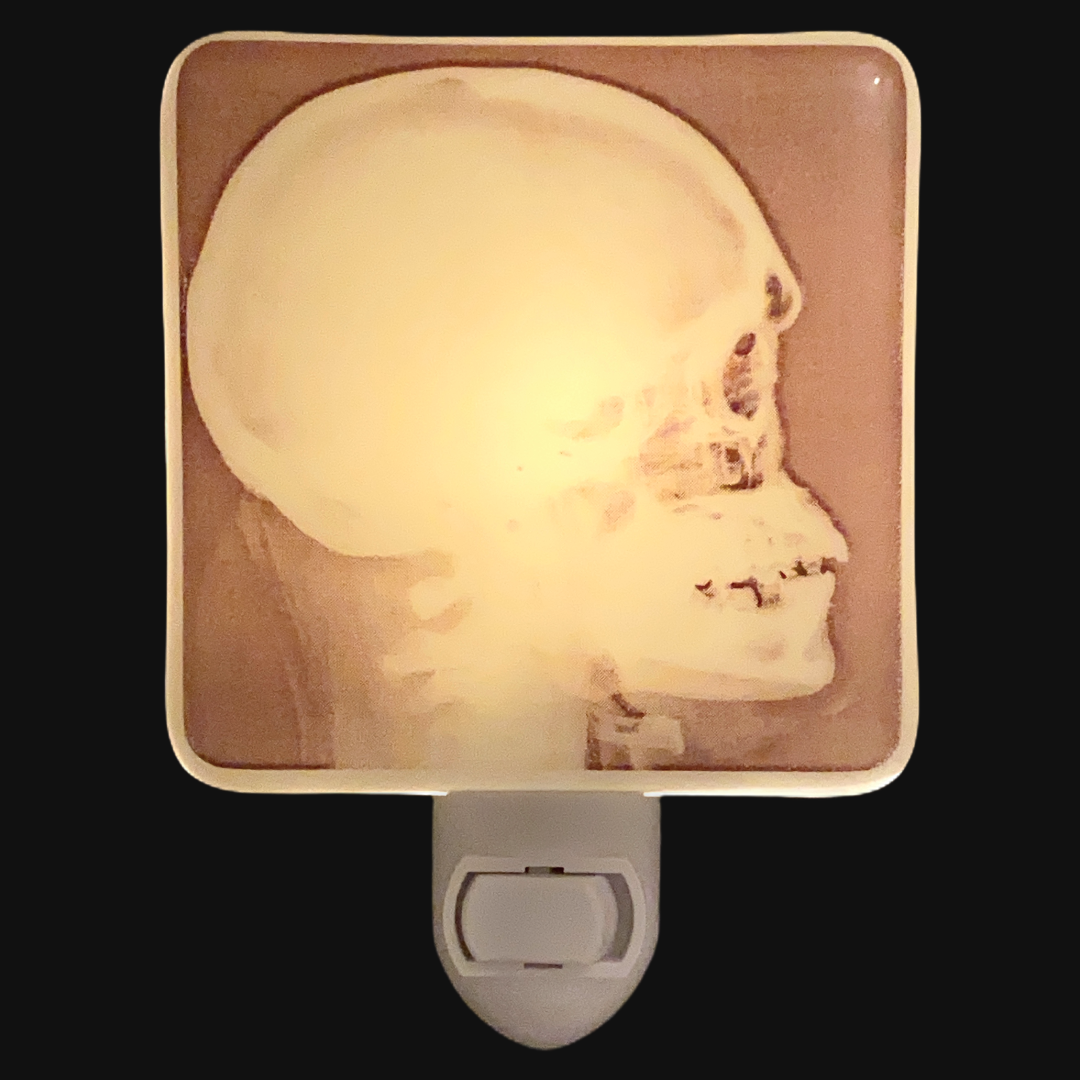 Skeleton Skull Head X-Ray  Night Light