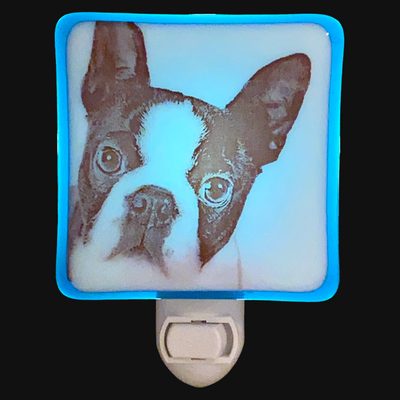 Boston Terrier Dog Face