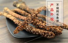 Load image into Gallery viewer, Bu Lao Cao Boschniakia Rossica Herb of Russian Boschniakia - 999 TCM