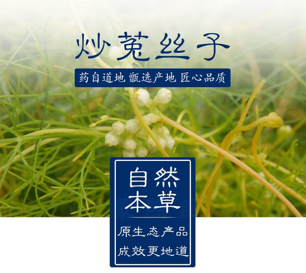Chao Tu Si Zi South Dodder Seed Chinese Dodder Seed Semen Cuscutae - Traditional Chinese Medicine - 999tcm - 999TCM