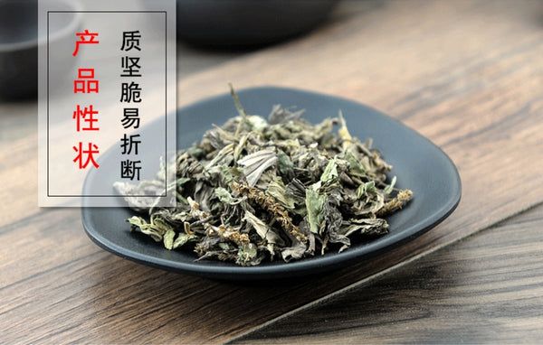 Che Qian Cao Herba Plantaginis Plantain Herb Plantago Asiatica L. - Traditional Chinese Medicine - 999tcm - 999TCM
