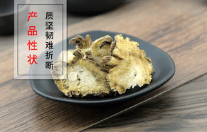 Du Huo Pubescent Angelica Root Radix Angelicae Pubescentis - 999 TCM