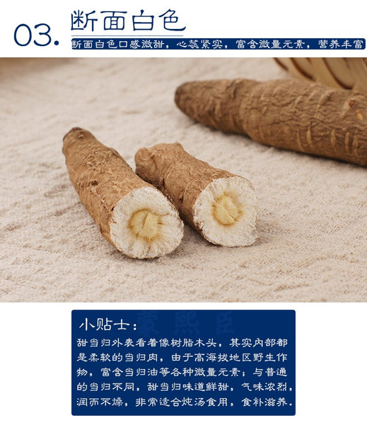 Du Jiao Dang Gui Chinese Angelica Radix Angelicae Sinensis - 999 TCM