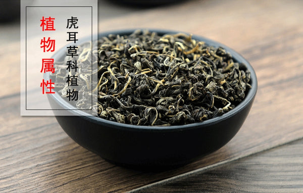 Gan Huang Cao Penthorum Chinense Pursh. Oriental Penthorum - Traditional Chinese Medicine - 999tcm - 999TCM
