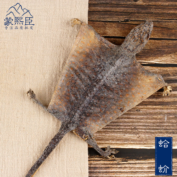 Ge Jie Gekko Gecko Tokay Gecko Toad-Headed Lizard - Traditional Chinese Medicine - 999tcm - 999TCM