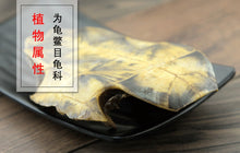 Load image into Gallery viewer, Gui Ban 龟板 Tortoise Shell Carapax et Plastrum Testudinis