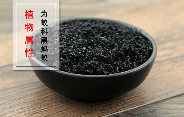 Hei Ma Yi Black Ant Polyrhachis Vicina Roger Polyrhachis Ant King of Herbs - Traditional Chinese Medicine - 999tcm - 999TCM