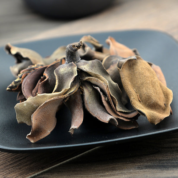 Hou Po Hua Flower of Official Magnolia Flos Magnoliae Officinalis - Traditional Chinese Medicine - 999tcm - 999TCM