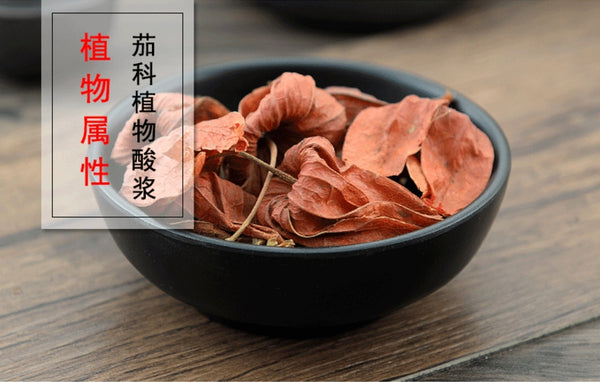 Jin Deng Long Calyx seu Fructus Physalis Franchet Groundcherry Calyx and Fruit - Traditional Chinese Medicine - 999tcm - 999TCM