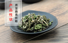 Load image into Gallery viewer, Lv Cao Herba Humuli Scandentis Japanese Hop Herb