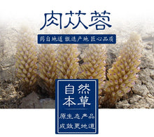Load image into Gallery viewer, Rou Cong Rong Herba Cistanche Desertliving Cistanche - 999 TCM