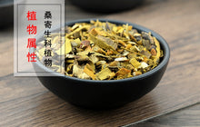 Load image into Gallery viewer, Sang Ji Sheng Chinese Taxillus Twig Herba Taxilli Taxillus Chinensis - 999 TCM