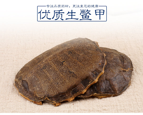 Sheng Bie Jia Turtle Shell Carapax Trionycis Trionyx Sinensis Wiegmann - Traditional Chinese Medicine - 999tcm - 999TCM