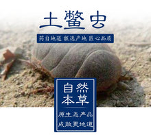 Load image into Gallery viewer, Tu Bie Chong Woodlouse Eupolyphaga Sinensis Walker - 999 TCM