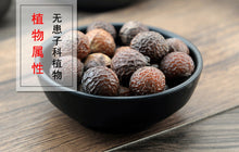 Load image into Gallery viewer, Wu Huan Zi Fructus Sapindi Mukorossi Chinese Soapberry Fruit - 999 TCM