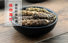 Load image into Gallery viewer, Xia Ku Cao Qiu Common Selfheal Spike Spica Prunellae - 999 TCM