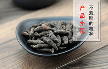 Load image into Gallery viewer, Xiang Fu Nutgrass Galingale Rhizome Rhizoma Cyperi - 999 TCM