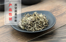 Load image into Gallery viewer, Ye Xia Zhu Herba Phyllanthi Urinariae Common Leafflower Herb - 999 TCM
