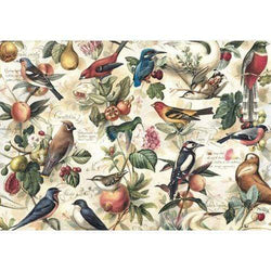 Bomo art papel 100x70 birds and frutis
