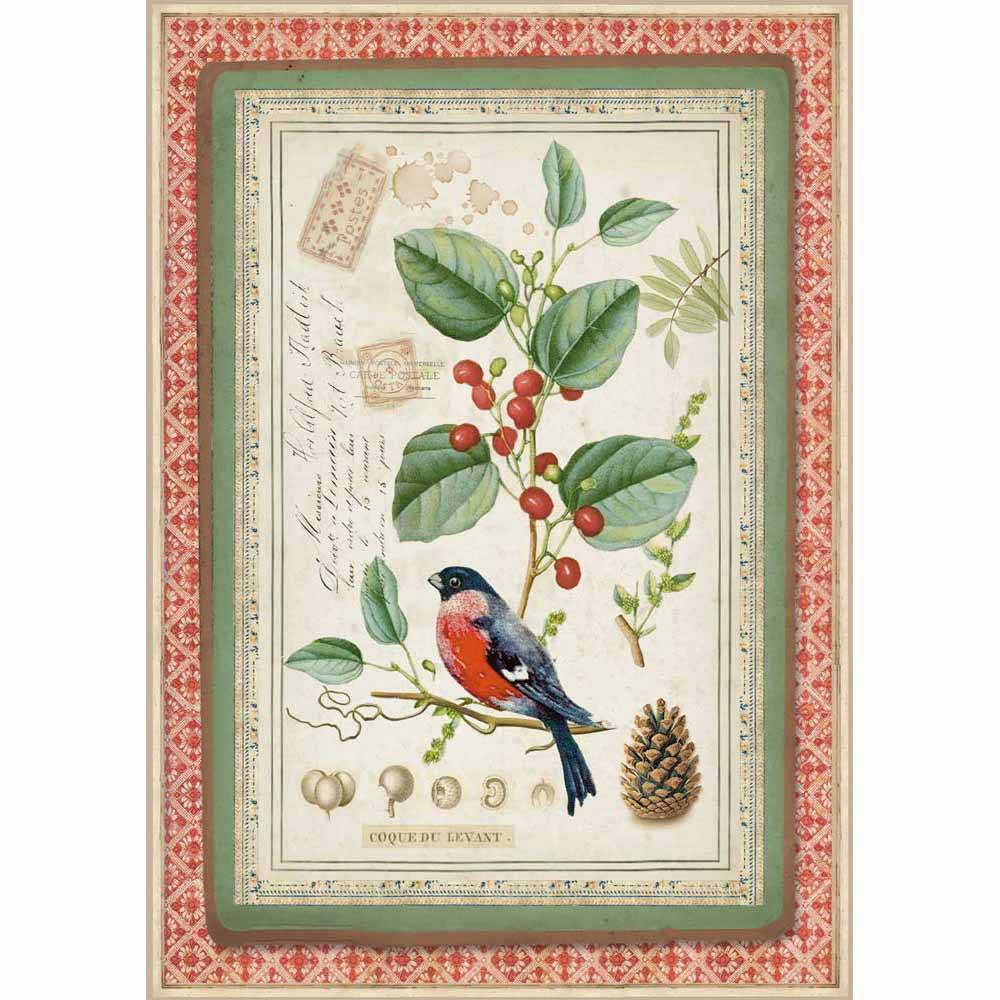 Stamperia papel arroz A4 DFSA4326 winter botanic little bird on holly