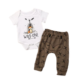 Boys Wild One Fox Set