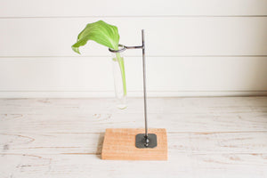 Propagation Stand - Timber Made Design Co