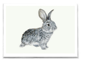 Daisy Rabbit Greeting Card