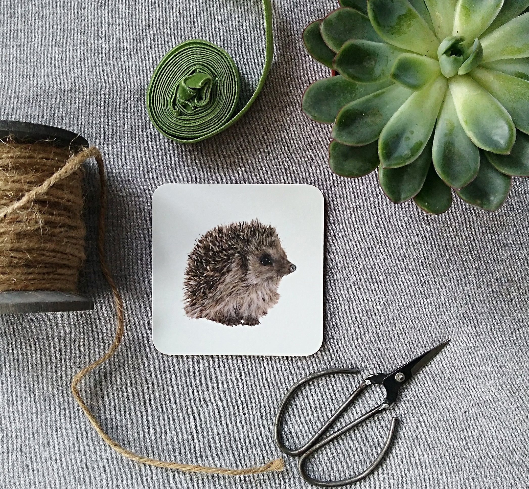 Percy Hedgehog Coasters