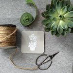 Grey Primula Coasters