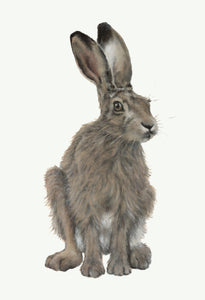 Rupert Hare Greeting Card