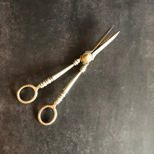 Load image into Gallery viewer, The Headhunter Iva - Antique Silver Plate Grape Scissors