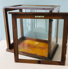 Load image into Gallery viewer, The Skater James - Laboratory Display Cabinet