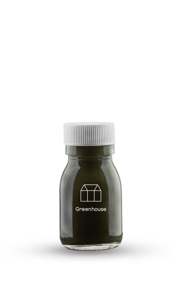 A shot of E3 Live. Wild harvested freshwater algae great to replace your morning coffee for sustained energy and a huge hit of plant protein for your day.