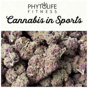 The Future of Cannabis in Sports