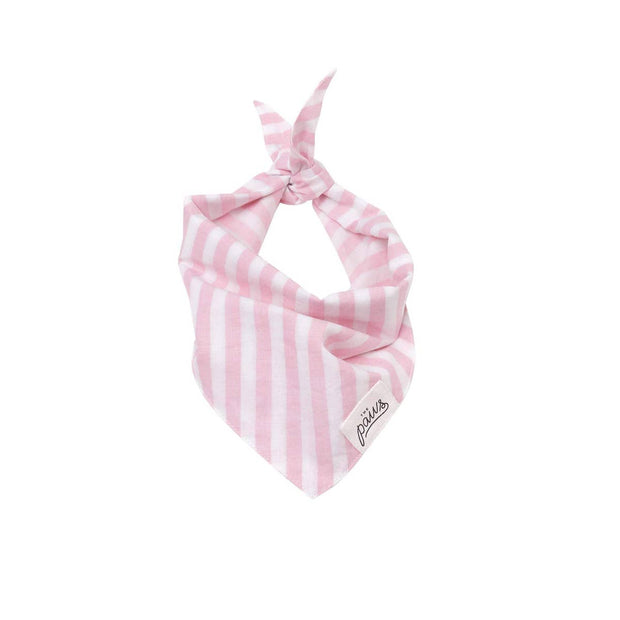 Pet Bandana - Cabana Blush Pink