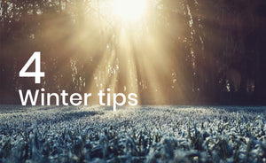 4 tips voor je gazon in de winter