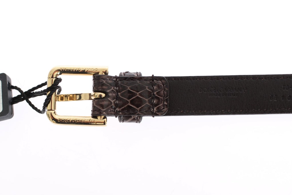 Brown Snakeskin Leather Crystal Gold Waist Belt - EnModaLife.Com