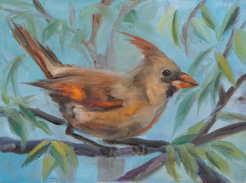 Female Cardinal Fine Art Print