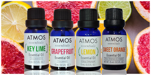 Citrus Medley Bundle