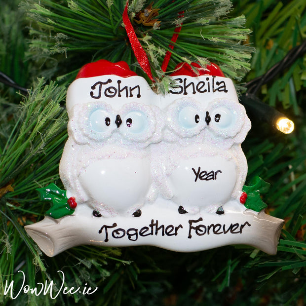 Personalised Christmas Ornament - Wise Owl Couple