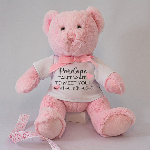 Personalised Teddy Bear - Can't Wait to Meet You - Baby Girl