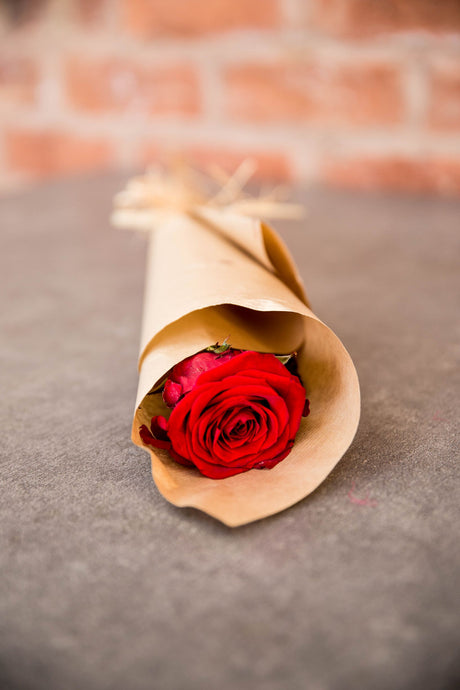 Valentine's Single Red Rose