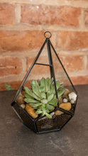 Load image into Gallery viewer, Black & Glass Terrarium