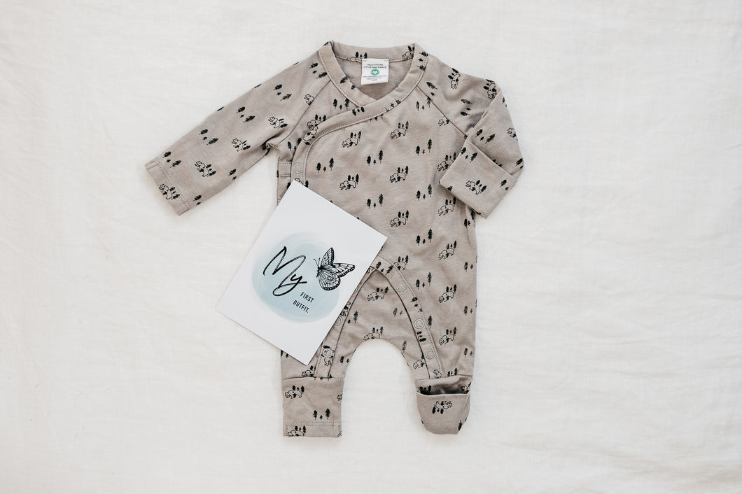 Organic cotton all-in-one - Bear Hunt