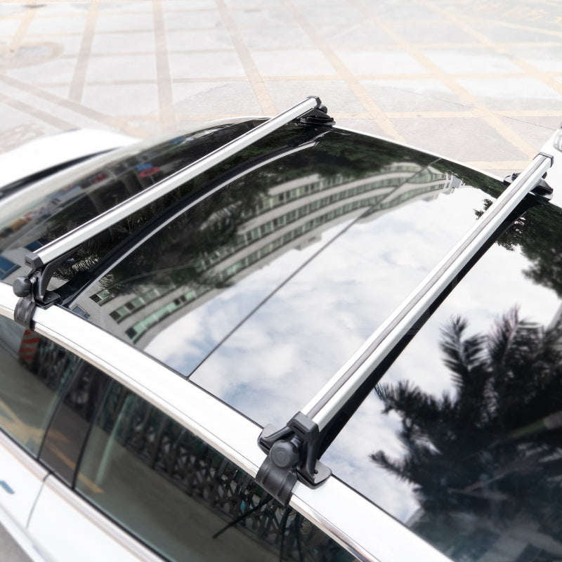 Roof_Rack_for_Tesla_Model_3_5.jpg