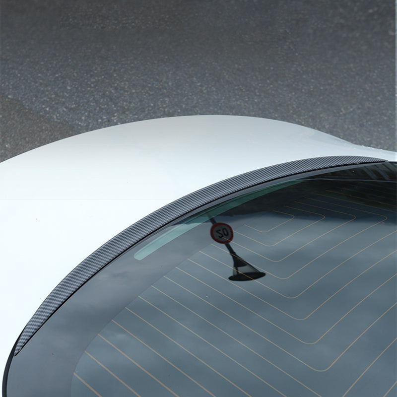 TAPTES Model 3 Rear Window Spoiler / Water Retaining Wing