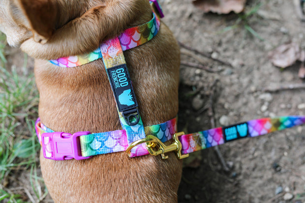 Mermaid Lagoon Strap Harness