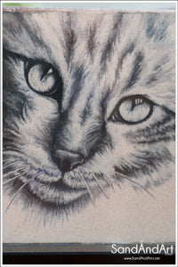 Pet Portraits From Photo -FREE SHIPPING