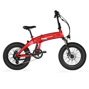 Maxfoot MF-19 FOR Europe 1000/750/500/250W Electric Foldable Fat Bike 20 Inch All Terrain